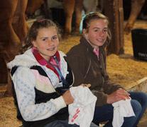 SA Junior Heifer Expo
